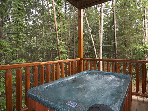 Top Of The Smokies Lodge  picture