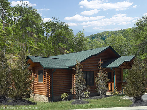 Gatlinburg cabin absolute adventure 1 bedroom sleeps 4 for Cabin rental smokey mountains