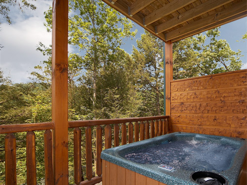 gatlinburg cabin more than wonderful 1 bedroom sleeps 8