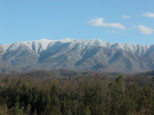 Paradise Vista picture